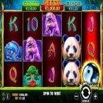 panda fortune slot