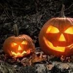 Online Slots Top Autumn
